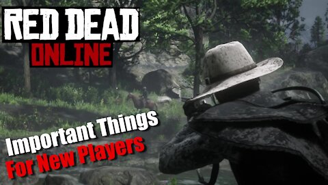 5 Important Things For New Players In Red Dead Online