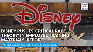 Disney pushes 'critical race theory' in employee training materials: report