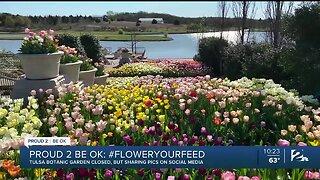 Proud 2 Be OK: Tulsa Botanic Garden Donates Freshly Cut Tulips to Hospital Workers, Patients