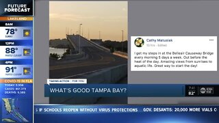 What's Good Tampa Bay?   Where is your favorite walking spot?