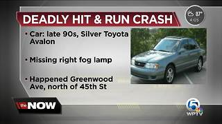 Driver sought after deadly hit-and-run crash in West Palm Beach