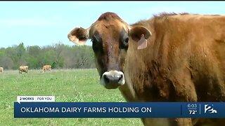 Oklahoma dairy farms holding on
