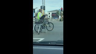 Dude on his bike pulls a dog in a shopping cart