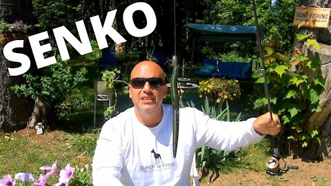 Mastering a Senko!