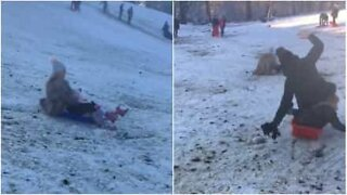 Sled ride ends in an accident