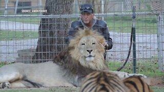 Big cat owner Jeff Lowe booted from Tiger King park