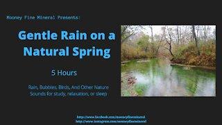 5 Hour Gentle Rain on a Spring ASMR