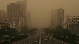 Study Shows Air Pollution Might Have Negative Effect On Brain Function