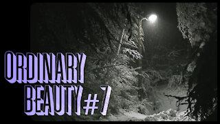 Ordinary Beauty #7 - Deep Winter Night