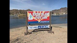 River Island State Park in Arizona - On the Colorado River