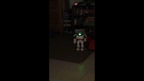 Mysterious Robot