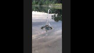Fascinating slow motion water splashes