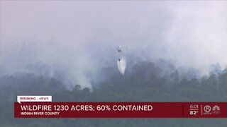 Tree Frog Wildfire in Indian River County 60% contained