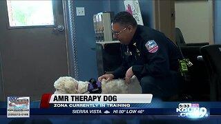 AMR Southern Arizona ambulance service training first therapy dog