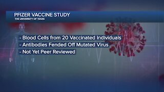 Pfizer-BioNTech vaccine just as effective against viral variant, study says