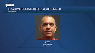 Police search for high risk sex offender