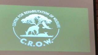 SOUTH AFRICA - Durban - Centre for Rehabilitation of Wildlife (Video) (LBG)