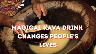 Magical Kava Drink Changes Peoples Lives