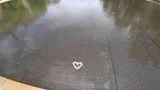 Oklahoma City Memorial Strange Coin Formation in Pool