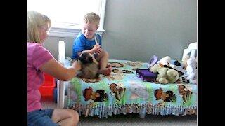Pug puppy + kid = cuteness overload!
