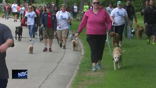 Hundreds come together for 19th annual PetWalk