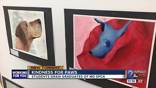 The art of the animal: students making a difference for MDSPCA