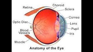 cataract procedures surgery