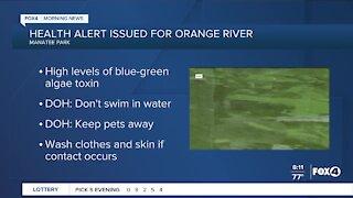 Health alert issued blue green algae alert
