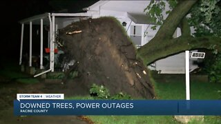 Downed trees, power outages left behind after Thursday night's storms