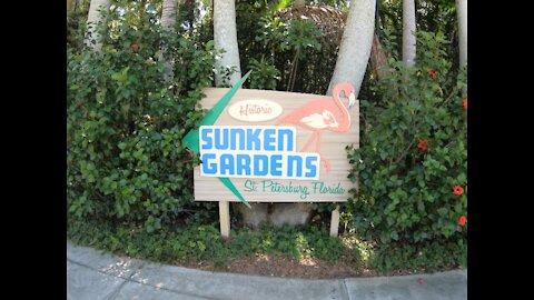 Sunken Gardens St. Petersburg FL.
