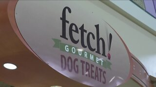 Local dog biscuit company is looking for investors