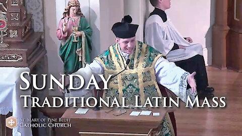 Sermon for the Twentieth Sunday After Pentecost, Oct. 10, 2021 (TLM)