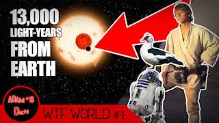 We Found Tatooine! And Other Outrageous Stories   WTF World #1