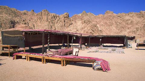 Bedouin Safari