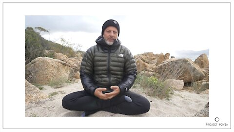 Meditation verändert die Welt