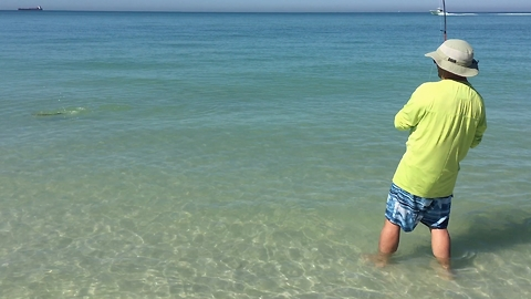 Fisherman Catches Majestic Bonnethead Shark