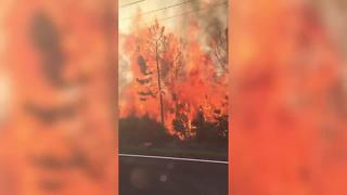 VIDEO: Hudson fire on Old Dixie Highway