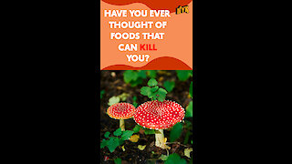 What Are The Exotic Foods That Can Kill You? *