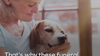 5 Dogs That Work In Funeral Homes