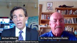 Conversation about Lake Okeechobee and toxic algae