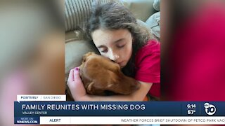 Positively San Diego: Family reunites with dog missing for over a month