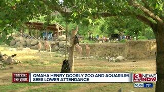 Omaha's Henry Doorly Zoo sees drop in attendance