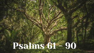 Psalms 61- 90 Prayer for Protection, Music with the Psalms, Christian Meditation, Soaking Worship