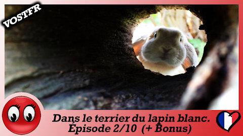 """(VOSTFR) """"La chute de la Cabale"""" Episode 2/10"""