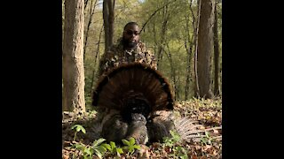 Pennsylvania Spring Turkey Hunt/Harvest
