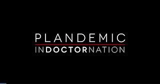 Plandemic Indoctrination Film