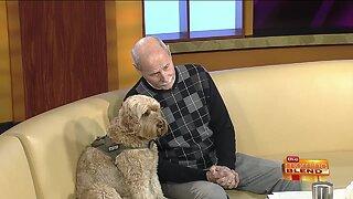 Empowering Veterans Through Service Dog Training