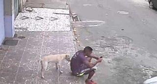 Hund tror at mannen er en brannhydrant