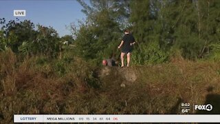 Child dies after car crashes into a Cape Coral canal
