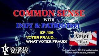 Ep. 409 Voter Fraud... What Voter Fraud? - The Common Sense Show